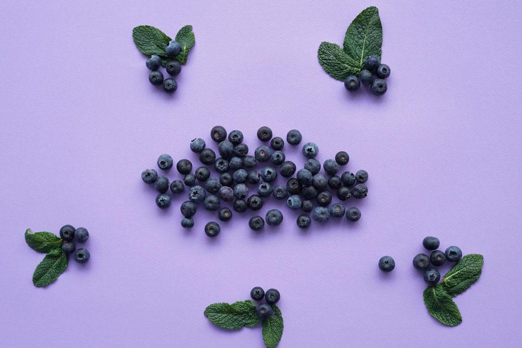 The-Sundae-Agency-Blog-Best-Berry-Picking-Photos-from-unsplash